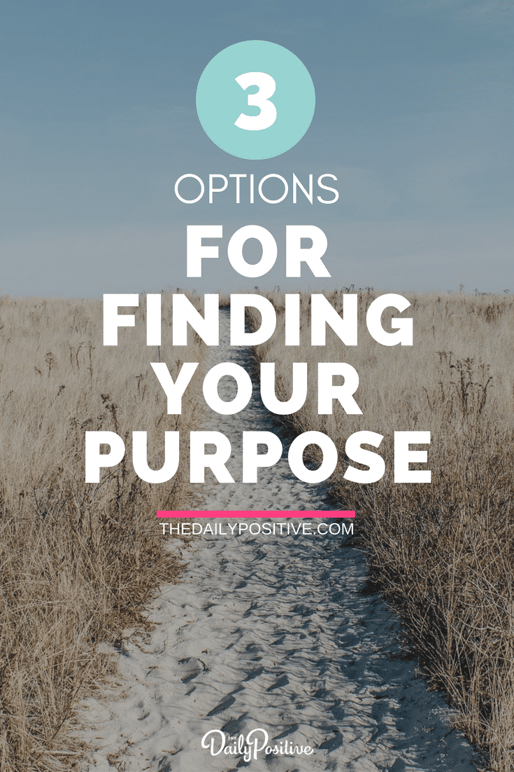 If you're looking for purpose in your life, here are 3 possibilities you can claim right now.