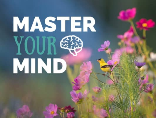 Master Your Mind Course